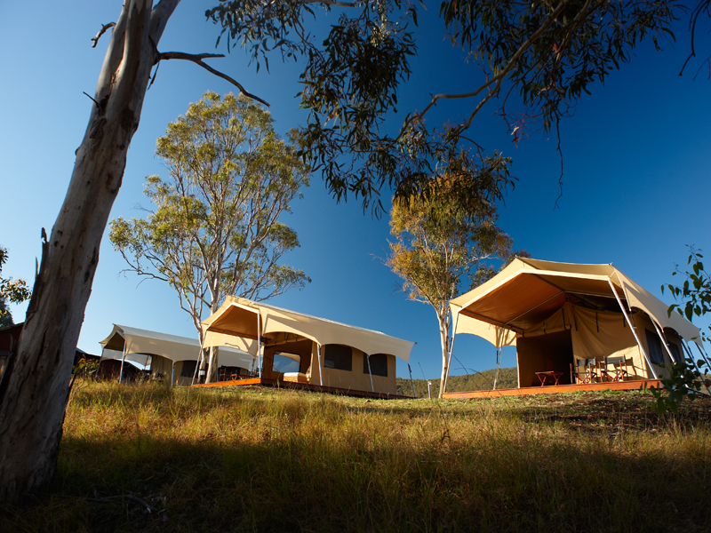 & Glamping Down Under Spicers Canopy Australia - Glamping.com
